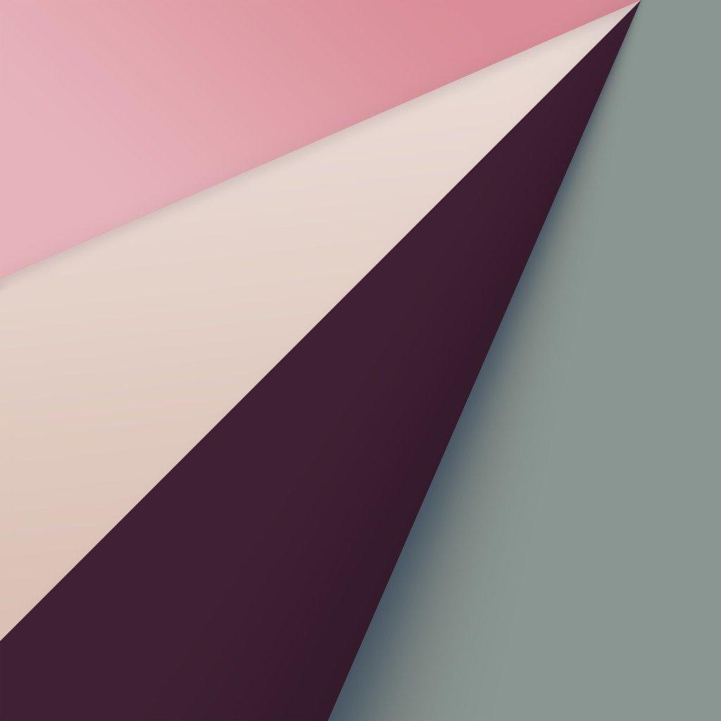 Safari Wallpaper AR72014 iPad Desktop Pink
